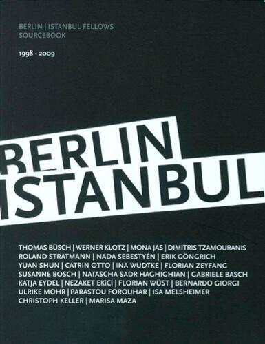 bosch-berlin-istanbul-fellows-2009.jpg